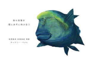 「魚の肖像Ⅲ 個と水平に向き合う」 魚譜画家 長嶋祐成 個展